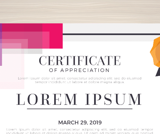 Certificate Beitrag